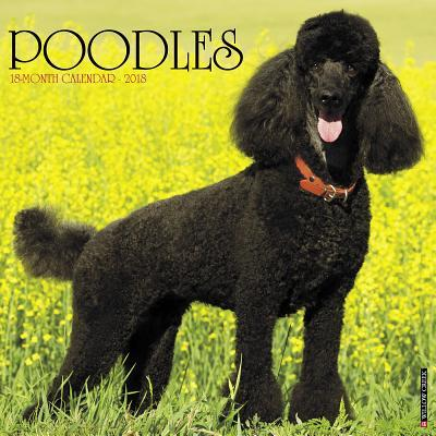 Just Poodles 2018 Calendar