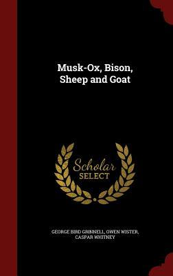 Musk-Ox, Bison, Shee...