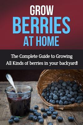 Grow Berries at Home