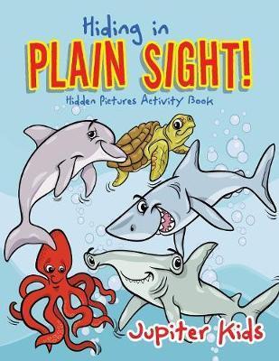 Hiding in Plain Sight! Hidden Pictures Activity Book