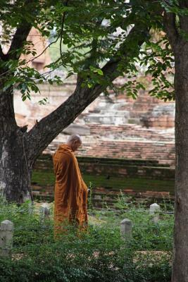 A Buddhist Monk Wearing an Orange Robe in Contemplation in Nature Journal
