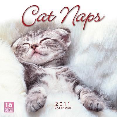 Cat Naps 2011 Calendar