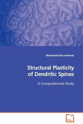 Structural Plasticity of Dendritic Spines