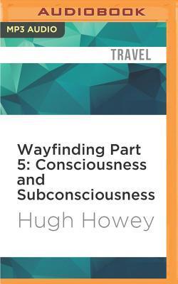 Consciousness and Su...