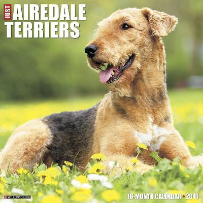 Just Airedale Terrie...