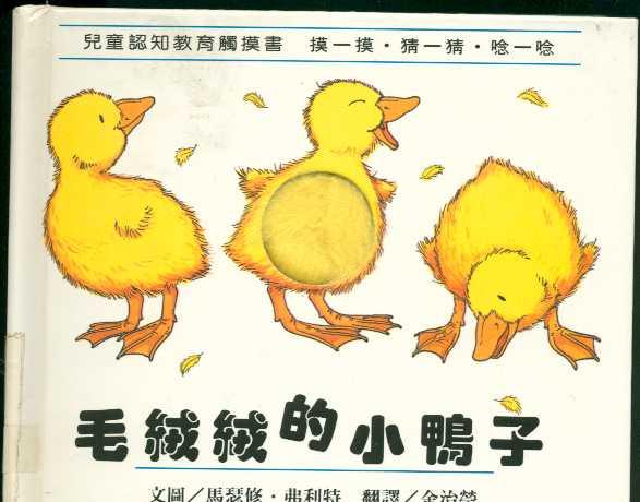 毛絨絨的小鴨子