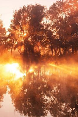 Golden Pond Journal