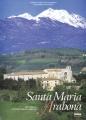 Santa Maria Arabona