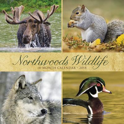 Northwoods Wildlife ...