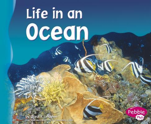 Life in an Ocean