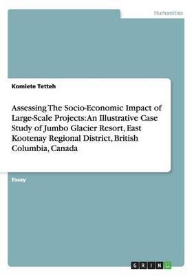 Assessing The Socio-...