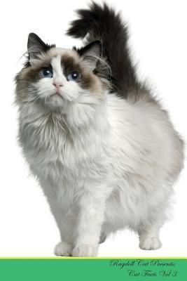 Ragdoll Cat Presents