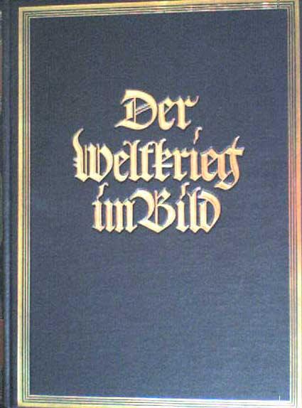 Der Weltkrieg im Bild, Band 1