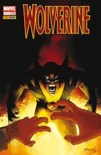 Wolverine n. 222