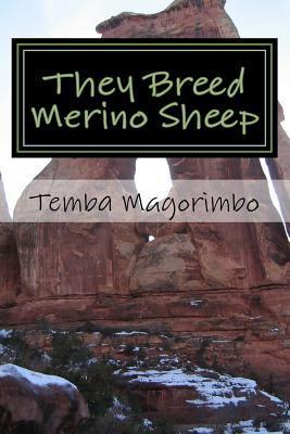 They Breed Merino Sh...