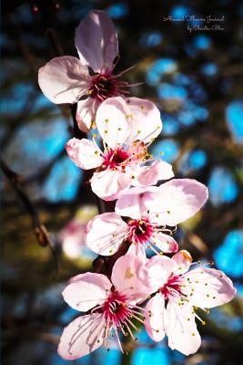 Almond Flowers Journal