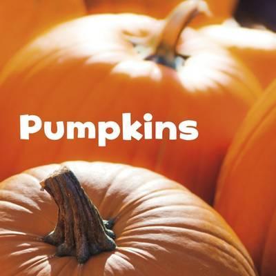 Pumpkins (Little Pebble