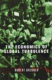 The Economics of Global Turbulence