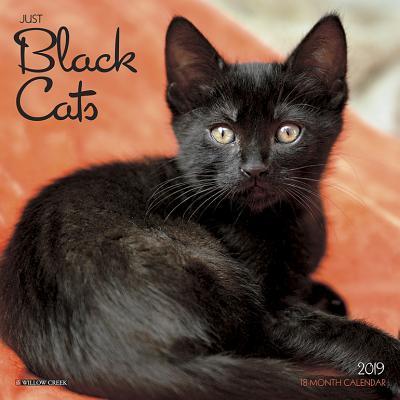 Black Cats 2019 Cale...