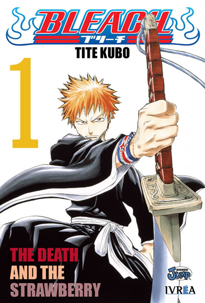 Bleach, vol 1