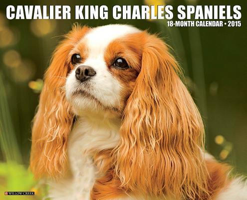 Cavalier King Charles Spaniels 18-Month 2015 Calendar