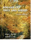 Diseases of Trees and Shrubs, Second Edition