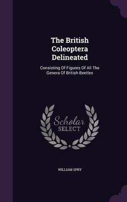 The British Coleoptera Delineated