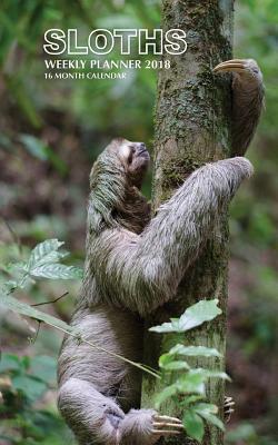 Sloths Weekly Planne...