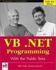 VB.NET Programming w...