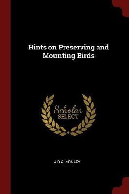 Hints on Preserving and Mounting Birds