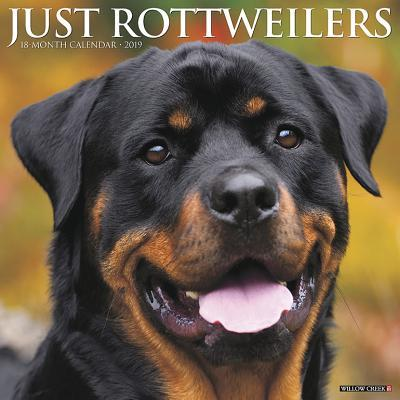 Just Rottweilers 2019 Calendar