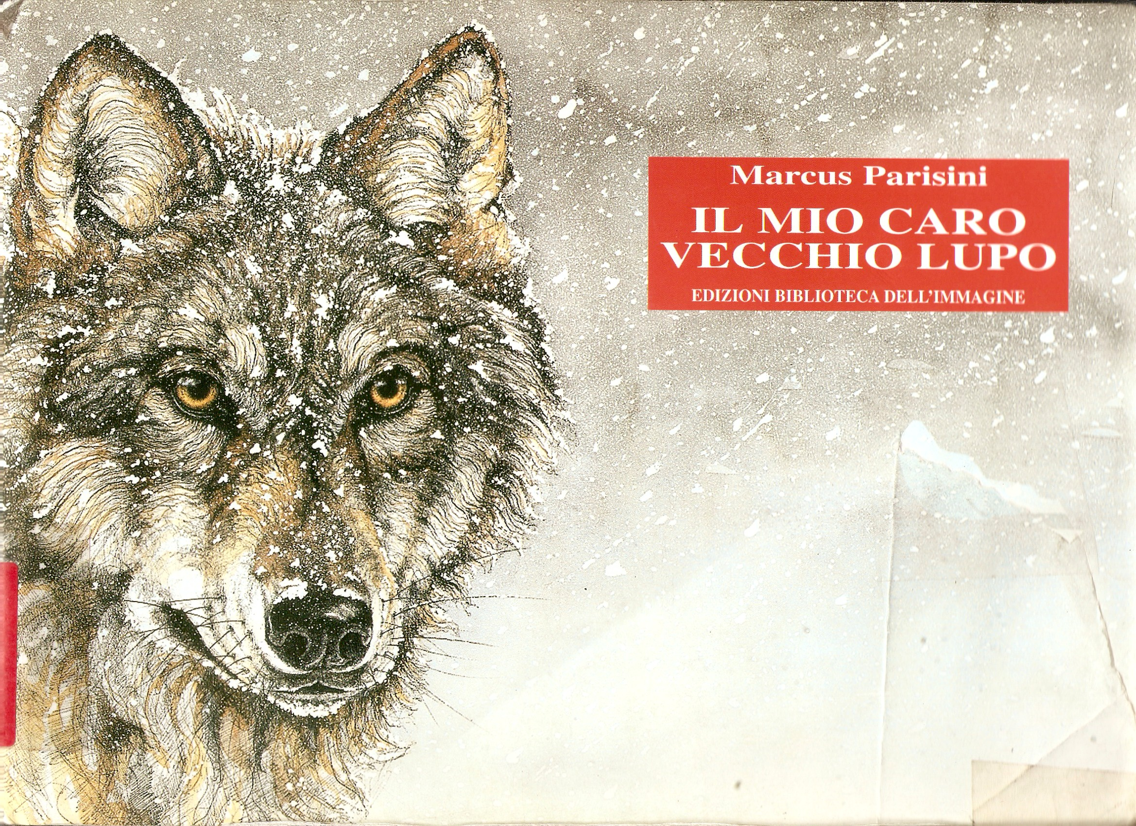 Il mio caro vecchio lupo