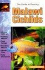 The Guide to Owning Malawi Cichlids