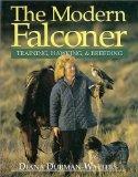 The Modern Falconer