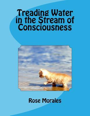 Treading Water in the Stream of Consciousness
