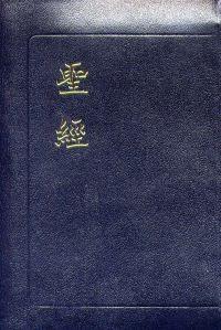 聖經新舊約全書