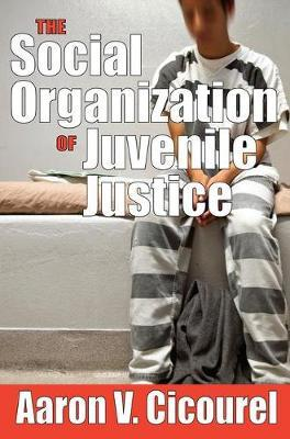 The Social Organization of Juvenile Justice