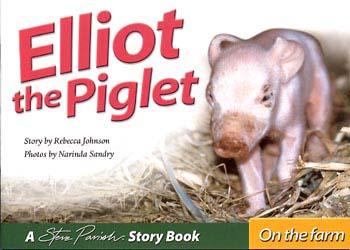 Elliot the Piglet