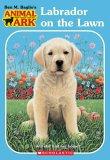 Labrador on the Lawn