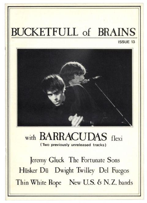 Bucketfull of Brains no. 13