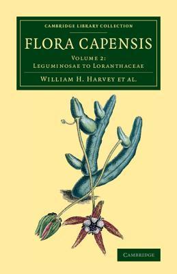 Flora Capensis 7 Volume Set in 10 Pieces