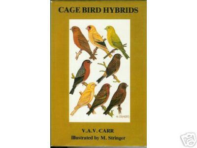 Cage bird hybrids