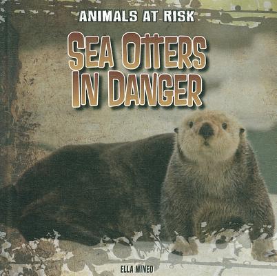 Sea Otters In Danger