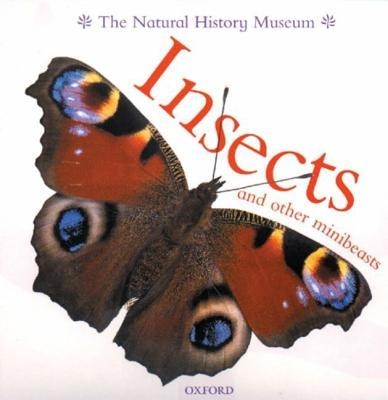 Insects And Other Minibeasts