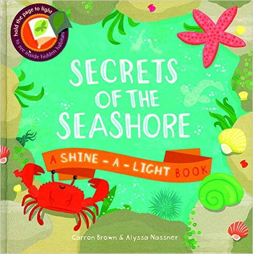 Secrets of the Seashore