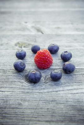 Blueberries and a Raspberry Fruit Journal