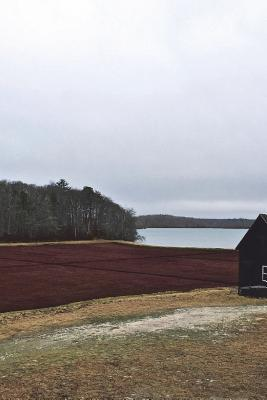 Cranberry Bog Journal