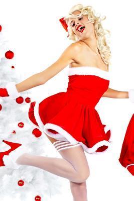 Lovley Santa Journal