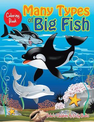 Many Types of Big Fish Coloring Book