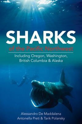 Sharks of the Pacific Northwest